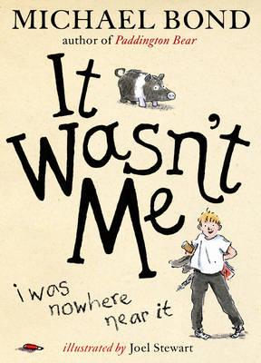 It Wasn't Me! book