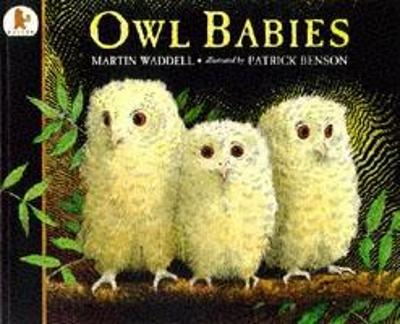 Owl Babies (Big Book) by Martin Waddell