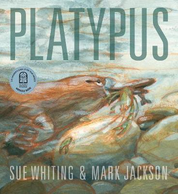 Platypus by Sue Whiting