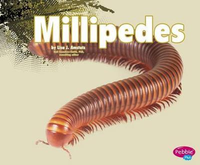 Millipedes by Nikki Bruno Clapper