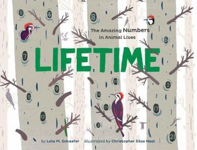 Lifetime by Lola M. Schaefer