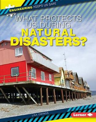 What Protects Us During Natural Disasters? by Lisa Owings