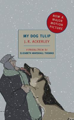 My Dog Tulip by Elizabeth Marshall Thomas