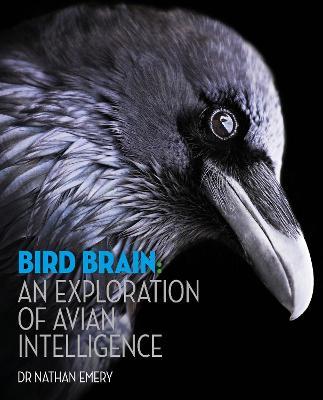 Bird Brain: An exploration of avian intelligence book
