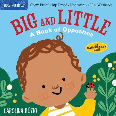 Indestructibles: Big and Little: A Book of Opposites by Amy Pixton