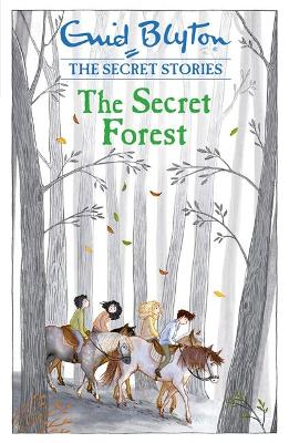 Secret Stories: The Secret Forest by Enid Blyton