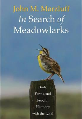 In Search of Meadowlarks: Birds, Farms, and Food in Harmony with the Land by John M. Marzluff