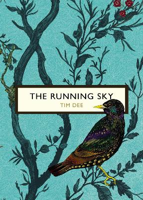 The Running Sky (The Birds and the Bees) by Tim Dee