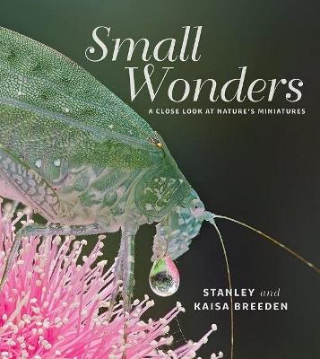 Small Wonders book
