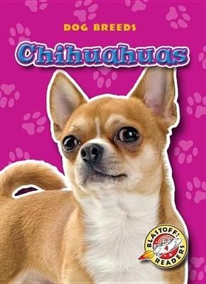 Chihuahuas by Sara Green