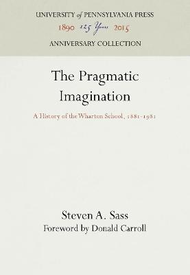 Pragmatic Imagination book