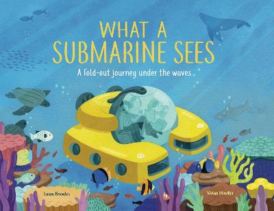 What a Submarine Sees: A fold-out journey under the waves book