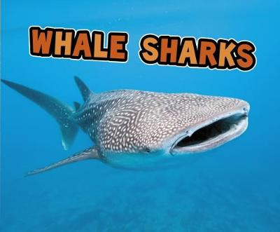 All About Sharks Pack A of 4 book