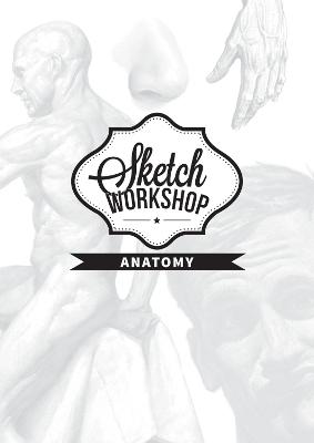 Sketch Workshop: Anatomy by 3dtotal