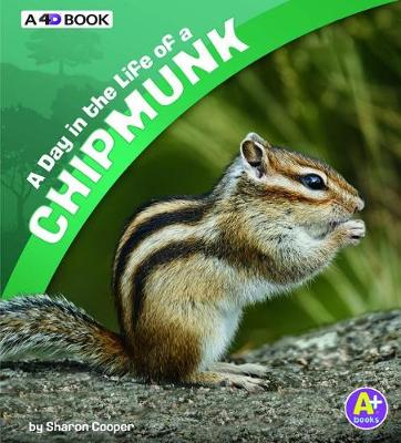 Day in the Life of a Chipmunk by Sharon Katz Cooper