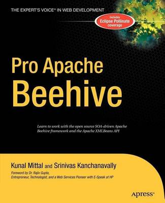 Pro Apache Beehive by Kunal Mittal