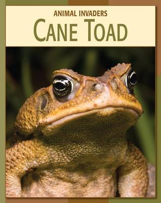 Cane Toad by Barbara Somervill