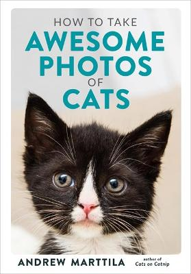 How to Take Awesome Photos of Cats by Andrew Marttila