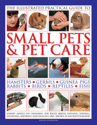 Illustrated Practical Guide to Small Pets & Pet Care by Margaret H. Bonham