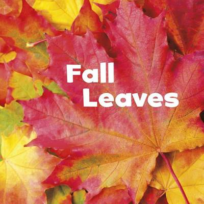 Fall Leaves by Erika L Shores