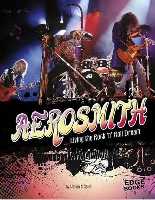 Aerosmith book