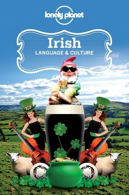 Irish Language & Culture by Lonely Planet