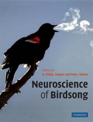 Neuroscience of Birdsong book