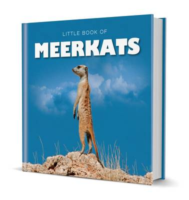 Little Book of Meerkats by Michelle Brachet