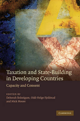 Taxation and State-Building in Developing Countries by Deborah Brautigam