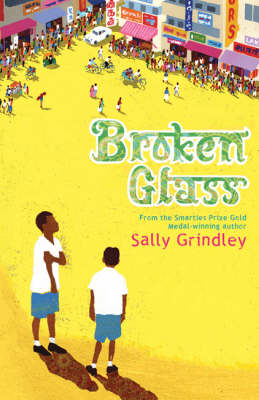 Broken Glass by Sally Grindley