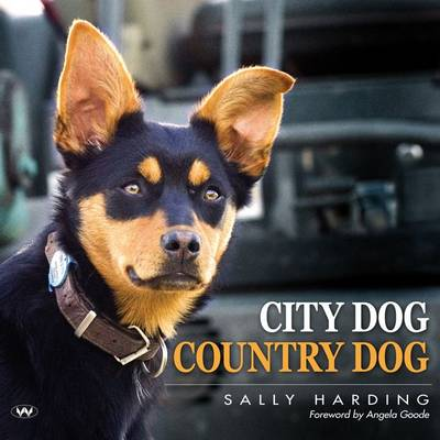 City Dog Country Dog by Sally Harding