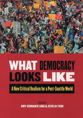 What Democracy Looks Like by Amy Schrager Lang