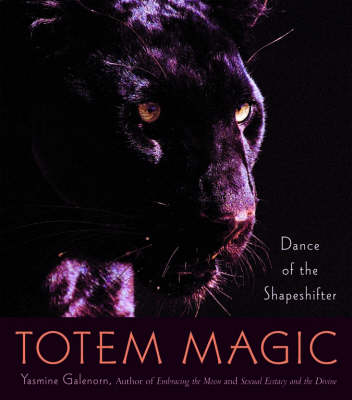 Totem Magic: Dance of the Shapeshifter book