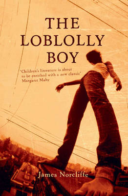 Loblolly Boy book