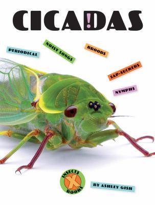Cicadas by Ashley Gish