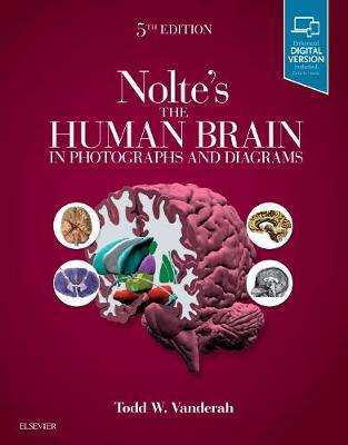 Nolte's The Human Brain in Photographs and Diagrams by Todd Vanderah