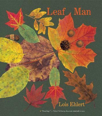 Leaf Man (Big Book) by Lois Ehlert