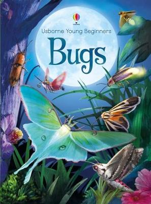 Young Beginners Bugs book