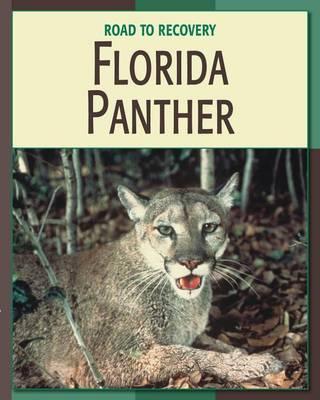 Florida Panther by Barbara Somervill