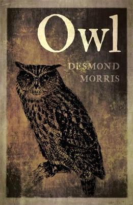 Owl by Desmond Morris