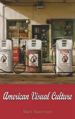 American Visual Culture book