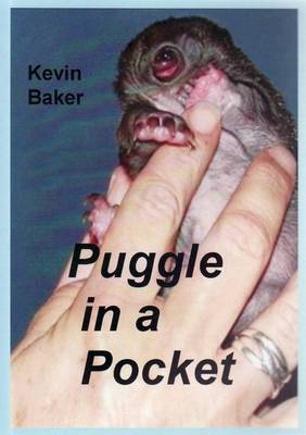 Puggle in a Pocket by Kevin Baker