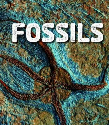 Fossils book