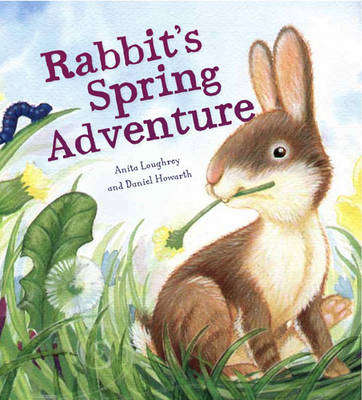 Rabbit's Spring Adventure book
