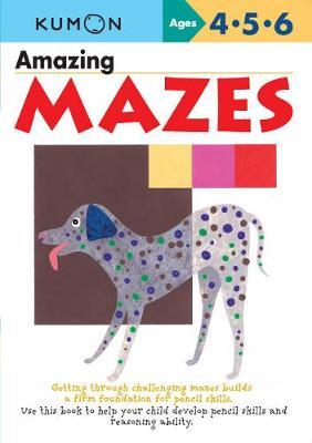 Amazing Mazes book