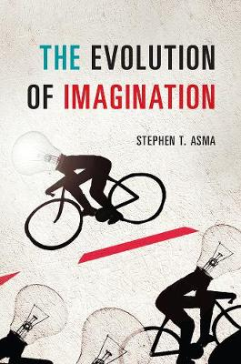 Evolution of Imagination book