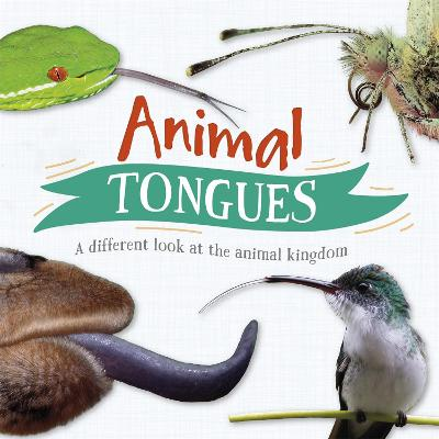 Animal Tongues: A different look at the animal kingdom book