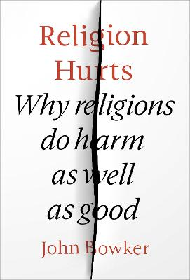 Religion Hurts: Why Religions do Harm as well as Good book