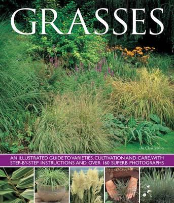 Grasses by Jo Chatterton