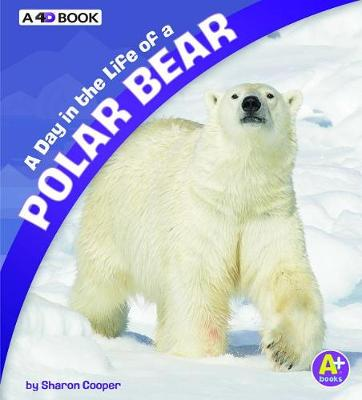 A Day in the Life of a Polar Bear by Sharon Katz Cooper